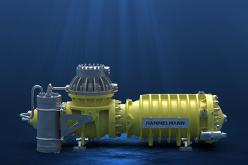 Subsea pumps